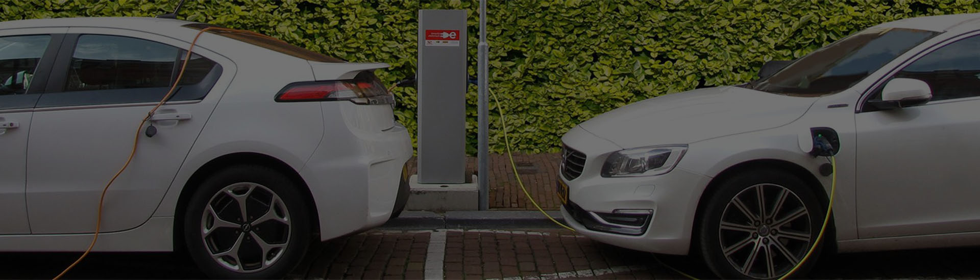 hybrid and electric car service